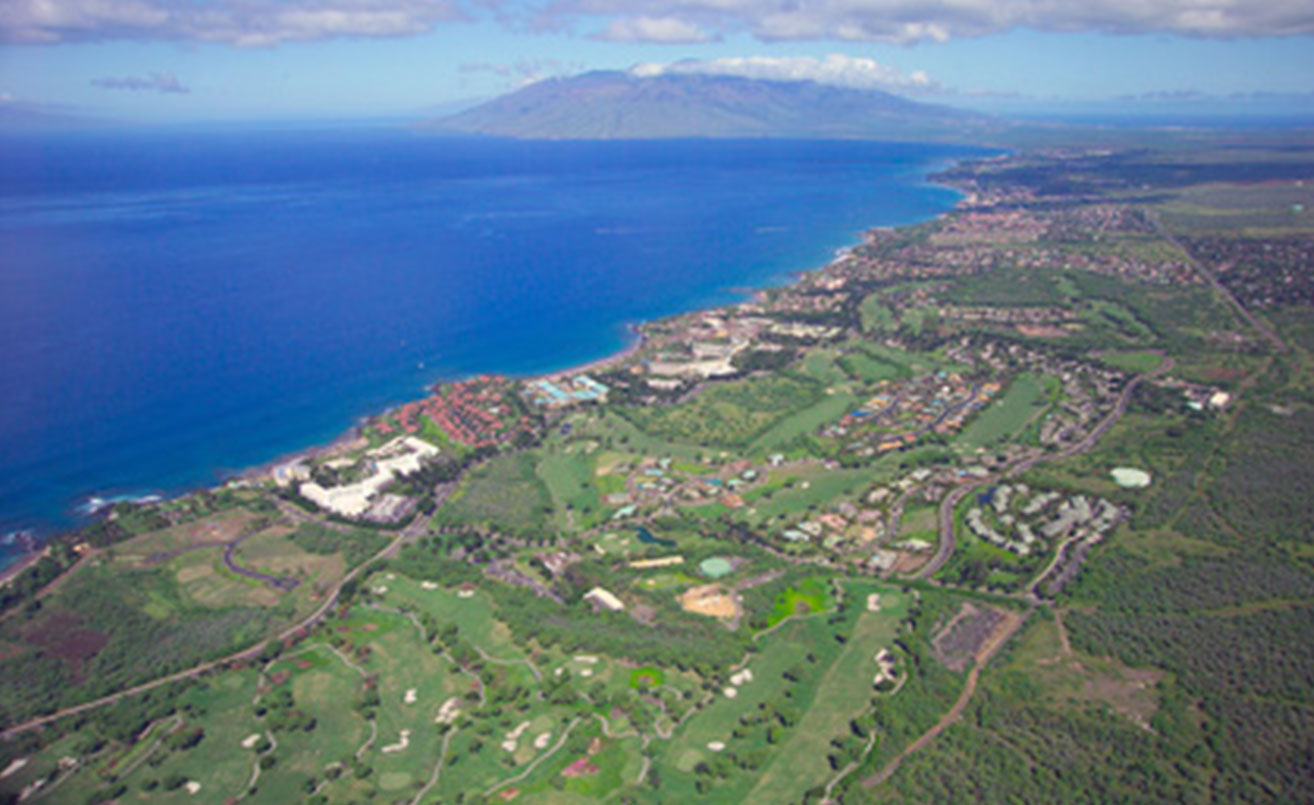 Wailea real estate property